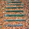 jesienne schody