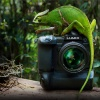 Lumix G9 :: Panasonic zaprezentował nowego bezlusterkowca z serii Lumix. Mowa o modelu DC-G9 wyposażonym w pozba