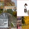 11 listopad w Orłowie i nie tylko! :: Być zwyciężonym  i nie ulec to zwycięstwo Zwyciężyć i spocząć na laurach to klęska! (J.Piłsudski) U