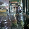 Miłość w strugach deszczu<br />.
