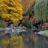 Jesienny koncert na sześć<br /> kolorów :)