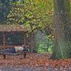 Jesienny relaksik:)