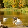 Jesienne wspomnienia znad jeziora w Otominie! Pozdrawiam:) :: Bliżej  nam do zimy ale w szufladach jeszcze czekają jesienne niespodzianki! Miłego wieczoru,pozdraw