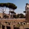Forum Romanum-październik<br /> 2017 r.