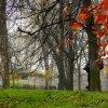 jesienny spacer - Park Jasnogórski - dziękuje Irenko  ::