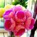 Kwiatki na dobrą nockę