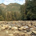 Coquihalla Canyon Provinc<br />ial Park. ::