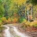 Kolory jesieni :: Las w okolicy wsi Pawły
