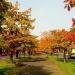 Kawałek mojej jesieni byd<br />goskiej dla Ciebie z pozd<br />rowieniami i muzyczką ::