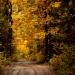 uroki jesieni