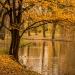 Jesień w Parku Sienkiewicza, Włocławek, kujawsko-pomorskie