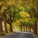 Złota jesień :-)