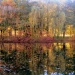 Obraz pędzlem jesieni malowany ...Miłego wieczorku kolorowych snów :)