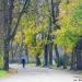 Jesień w zabytkowym Parku Skaryszewskim