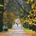 Jesień w Łazienkach